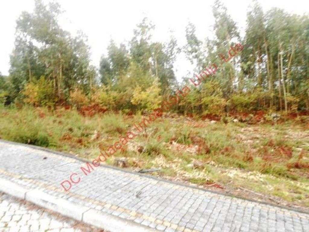Terreno para comprar, Rendufinho, Braga - Foto 4