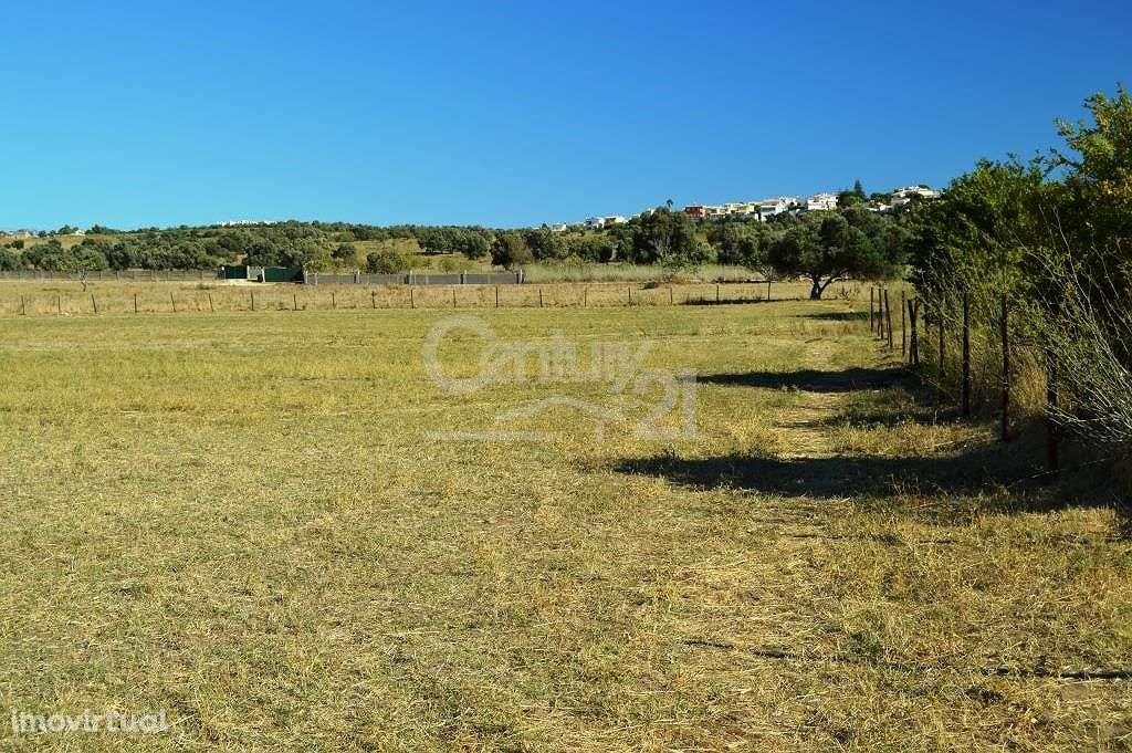 Terreno para comprar, Odiáxere, Faro - Foto 4
