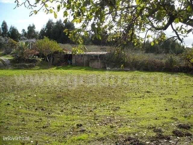 Terreno para comprar, Almaceda, Castelo Branco - Foto 11