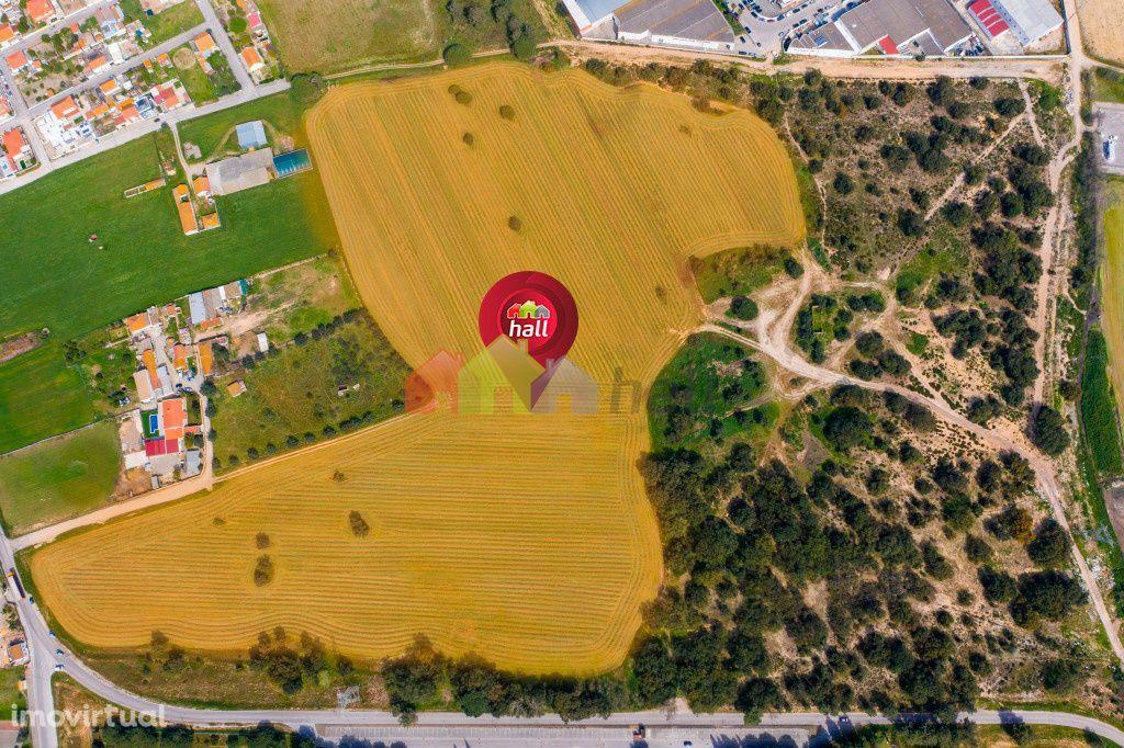 Terreno Misto de 172.560m2 nas Arroteias – Alhos Vedros - Moita
