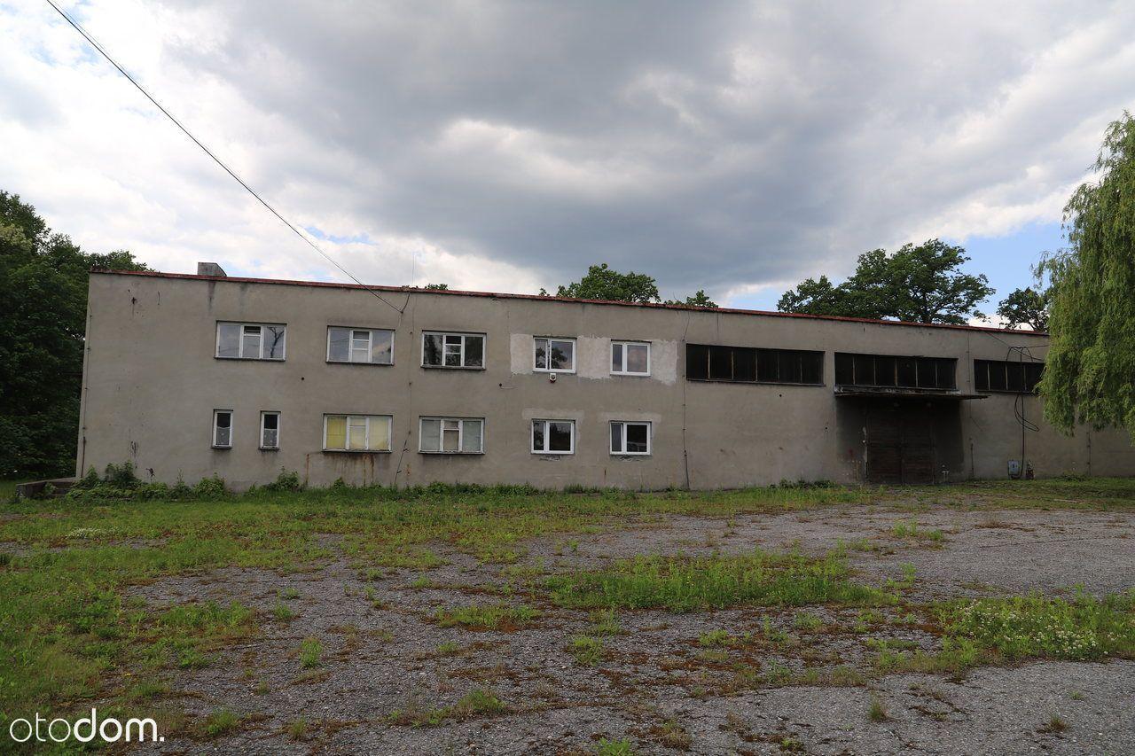 MAGAZYN w Brzączowicach-możliwy podział metrażu!