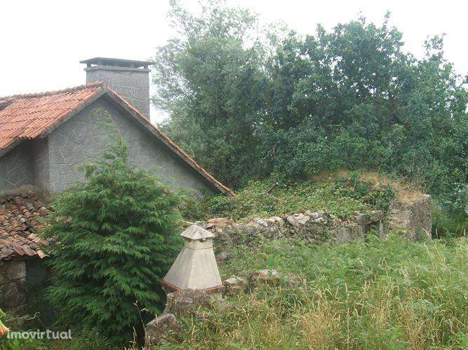 Quintas e herdades para comprar, Facha, Viana do Castelo - Foto 8