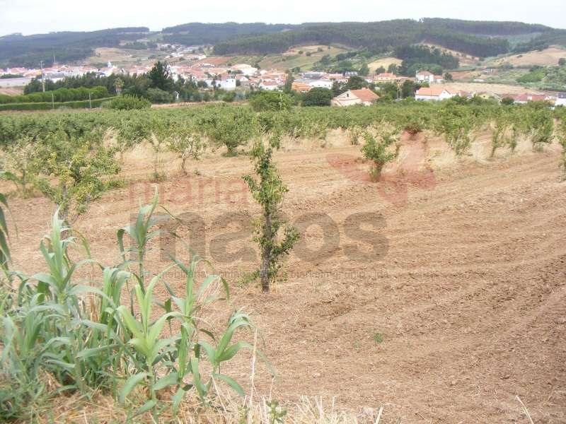 Quintas e herdades para comprar, Lourinhã e Atalaia, Lourinhã, Lisboa - Foto 31