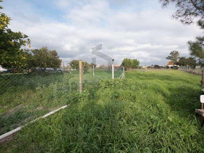 Quintas e herdades para comprar, Pinhal Novo, Palmela, Setúbal - Foto 6