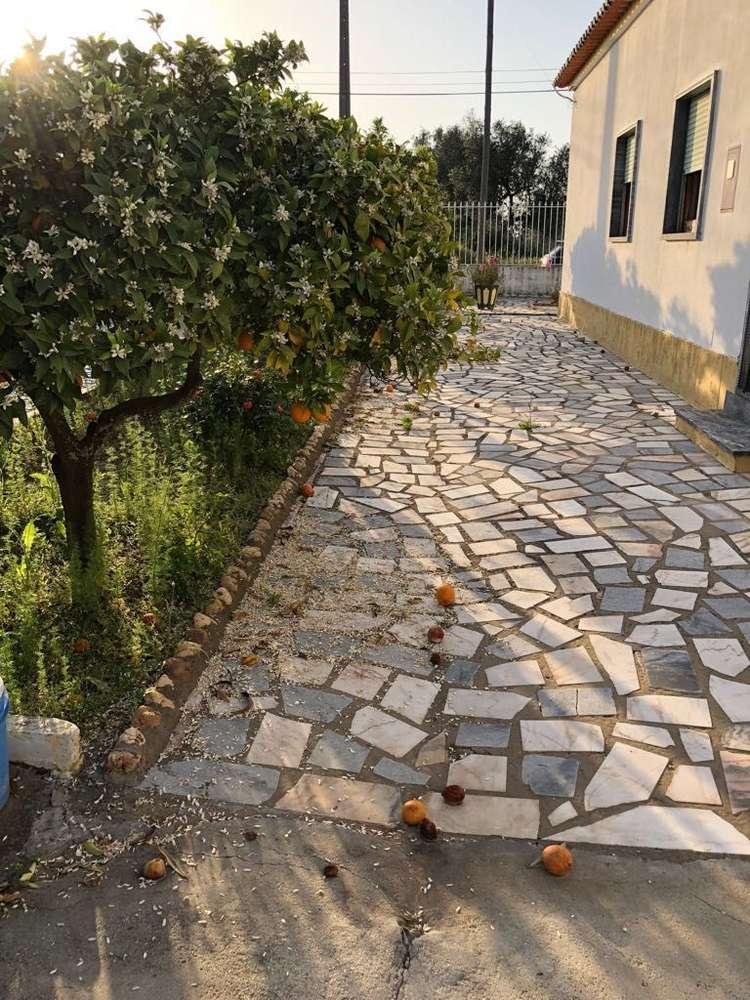Quintas e herdades para comprar, Alvalade, Setúbal - Foto 11
