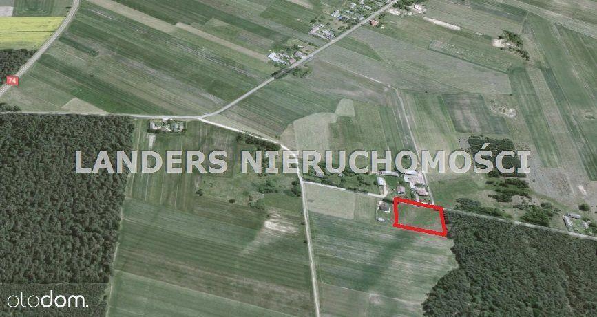 Działka, 3 600 m², Dąbrowa nad Czarną