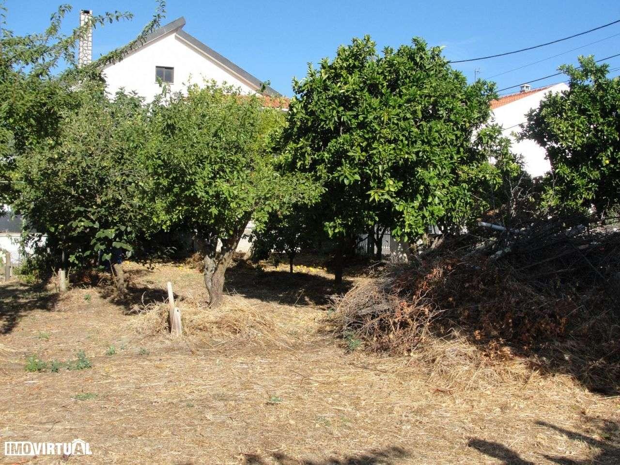 Agência Imobiliária: Salideia