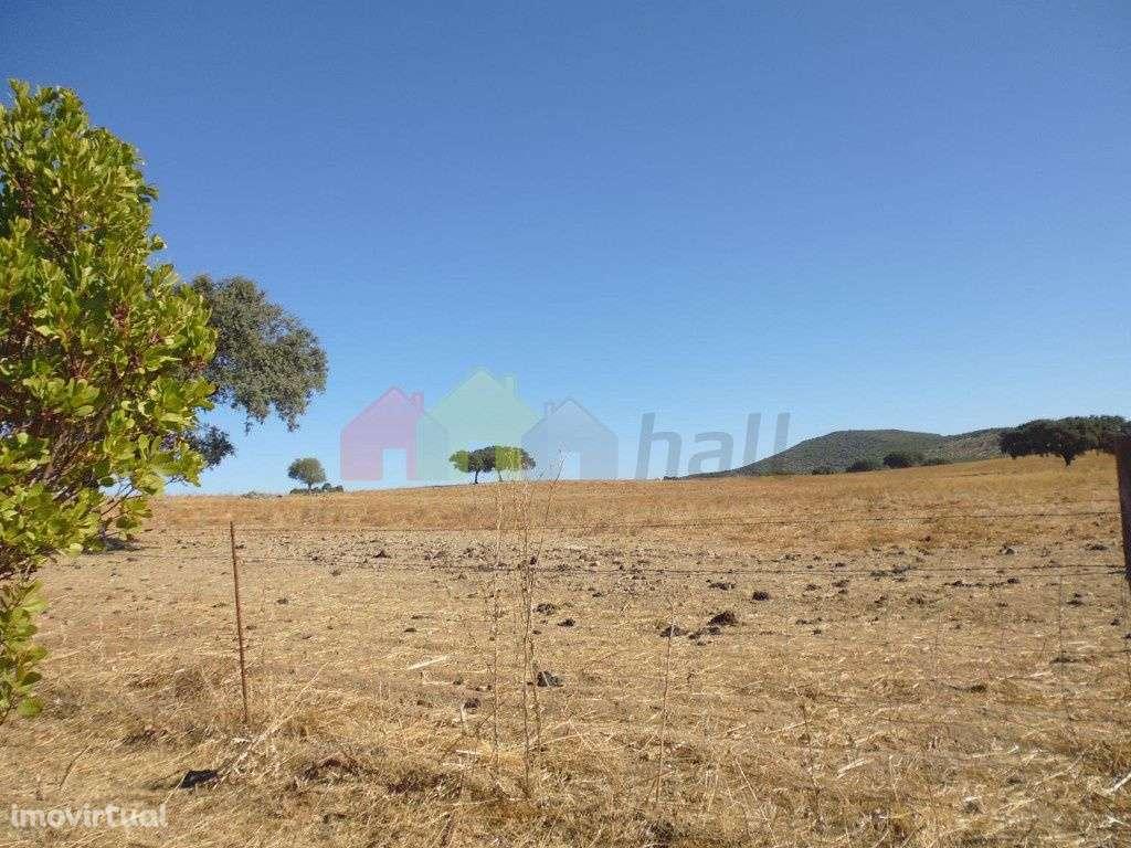 Quintas e herdades para comprar, Vila Verde de Ficalho, Beja - Foto 16