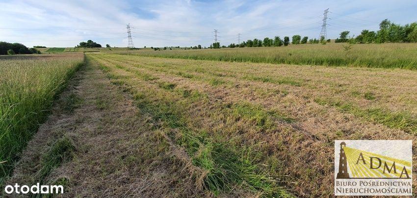 Duża działka budowlana 0,55 ha Toporowice/Dąbie