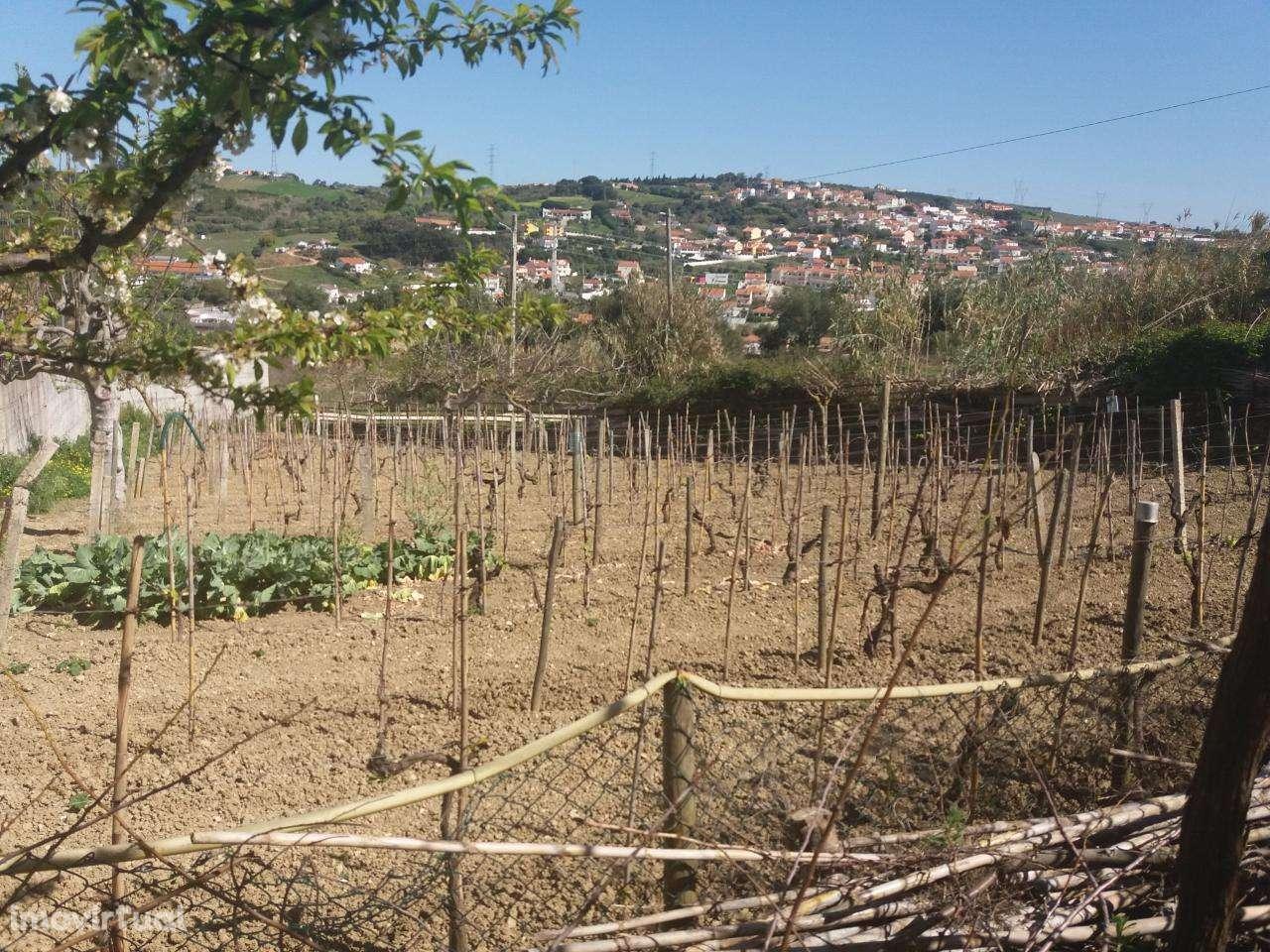 Quintas e herdades para comprar, Alhandra, São João dos Montes e Calhandriz, Vila Franca de Xira, Lisboa - Foto 1