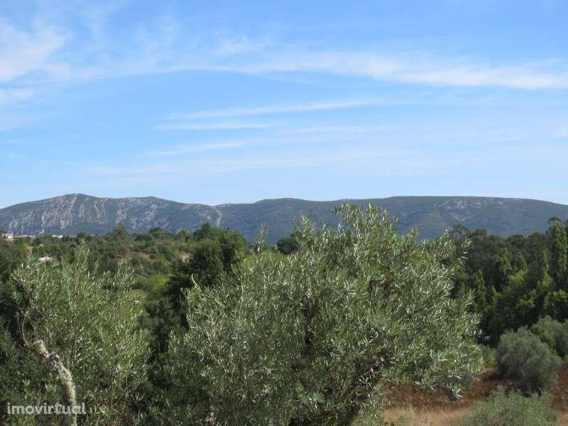 Quintas e herdades para comprar, Castelo (Sesimbra), Sesimbra, Setúbal - Foto 2