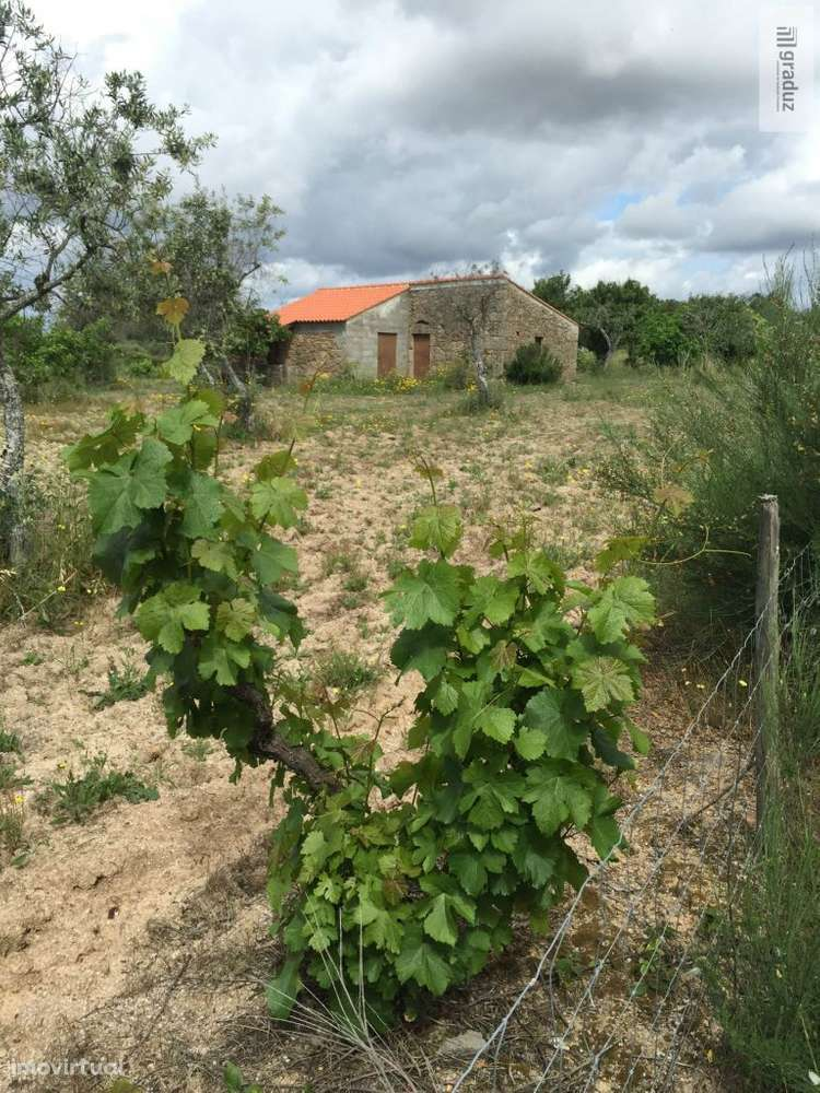 Quintas e herdades para comprar, Lardosa, Castelo Branco - Foto 2