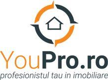 Dezvoltatori: YouPro.ro - Timisoara, Timis (localitate)