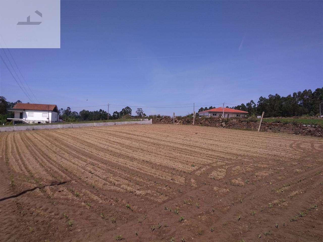 Terreno para comprar, Gondifelos, Cavalões e Outiz, Braga - Foto 5