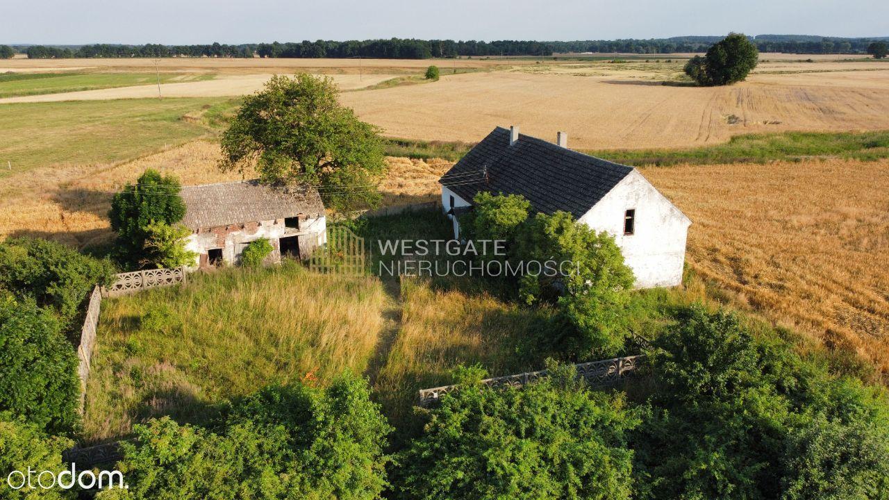 Nieruchomość w Luboszyce Małe - działka 9500 m2