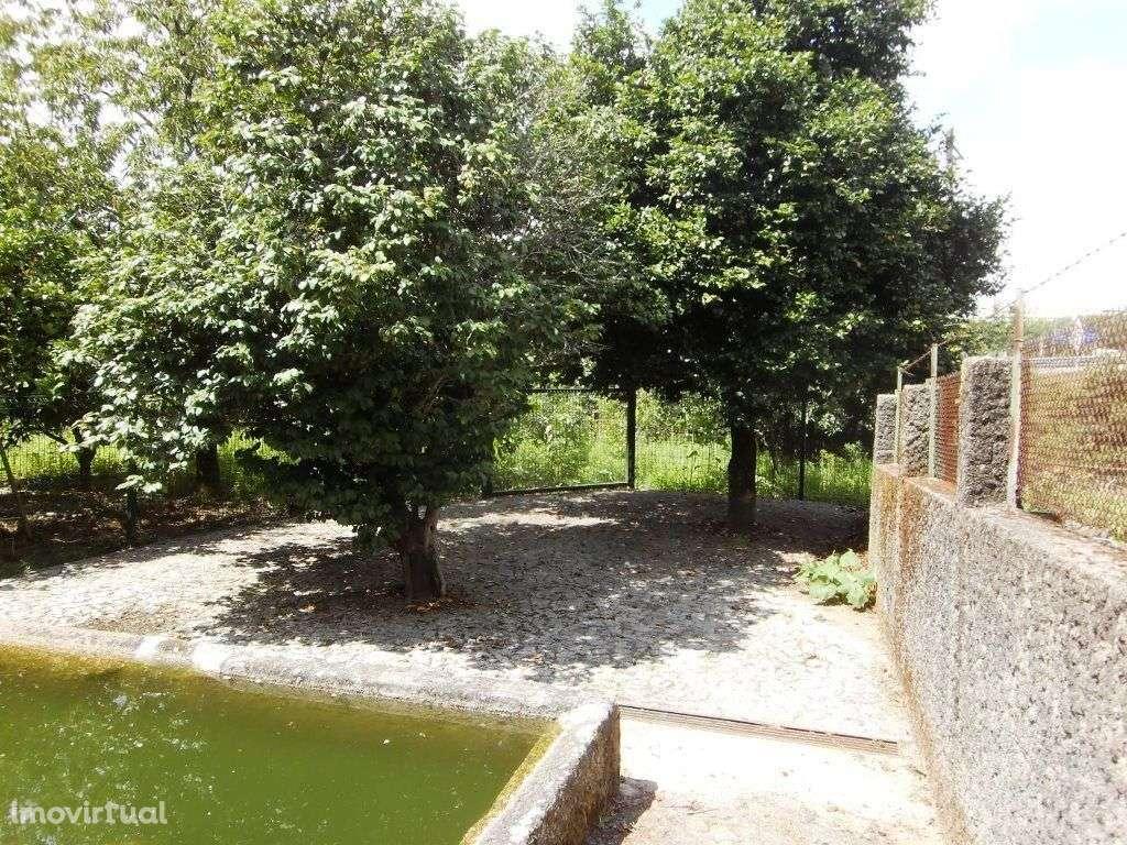 Quintas e herdades para comprar, Real, Dume e Semelhe, Braga - Foto 35