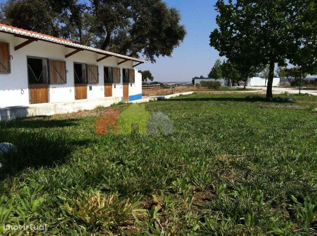 Quintas e herdades para comprar, Aljustrel e Rio de Moinhos, Aljustrel, Beja - Foto 18