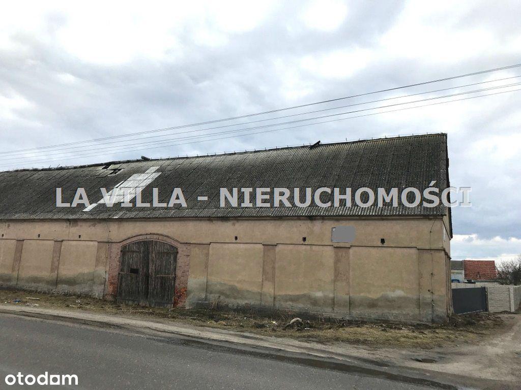 Hala/Magazyn, 750 m², Kłoda