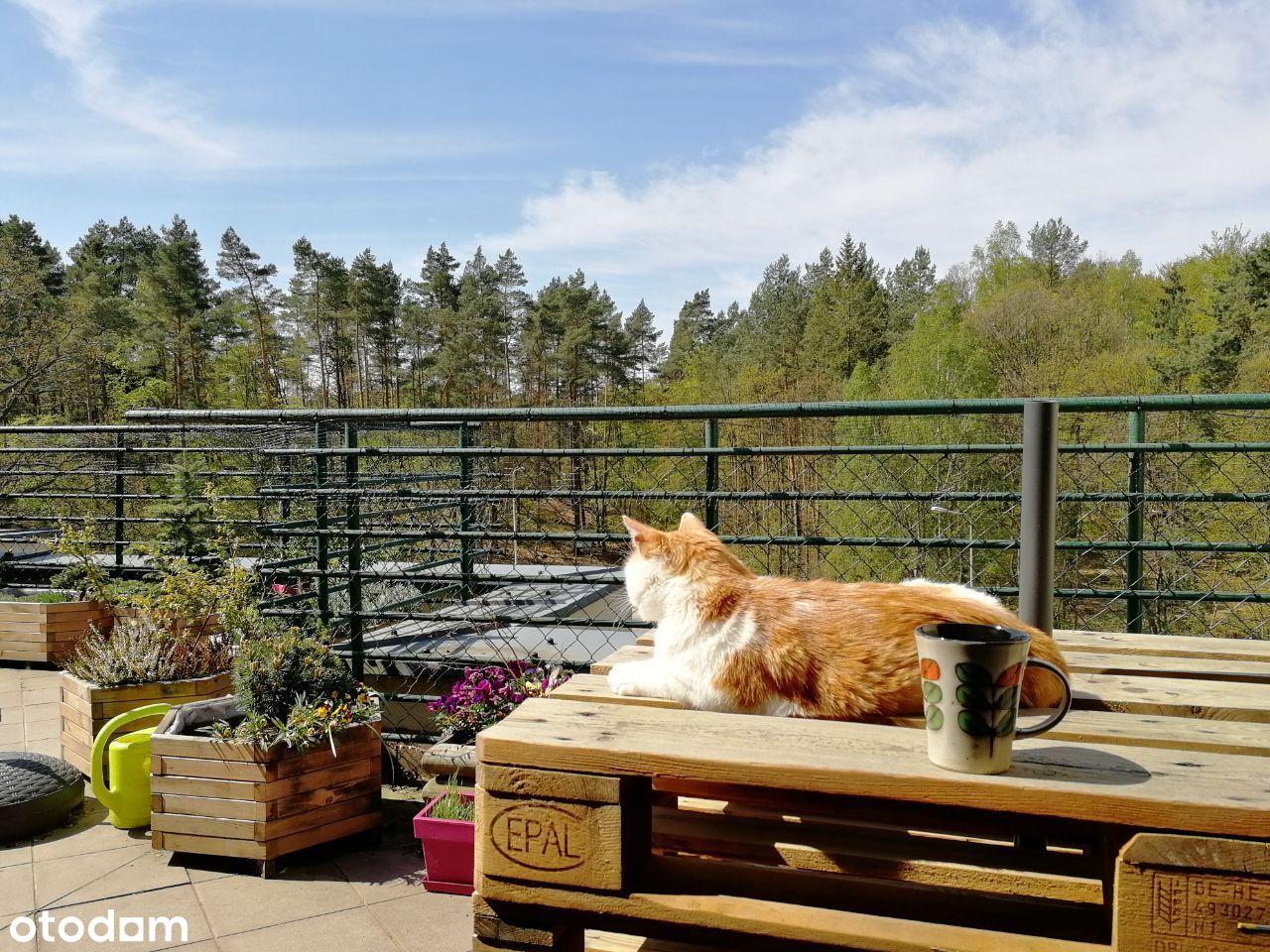 Mieszkanie z 35metr tarasem, strych, widok na las