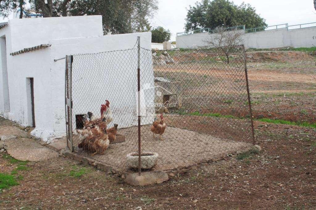 Terreno para comprar, Mexilhoeira Grande, Portimão, Faro - Foto 9