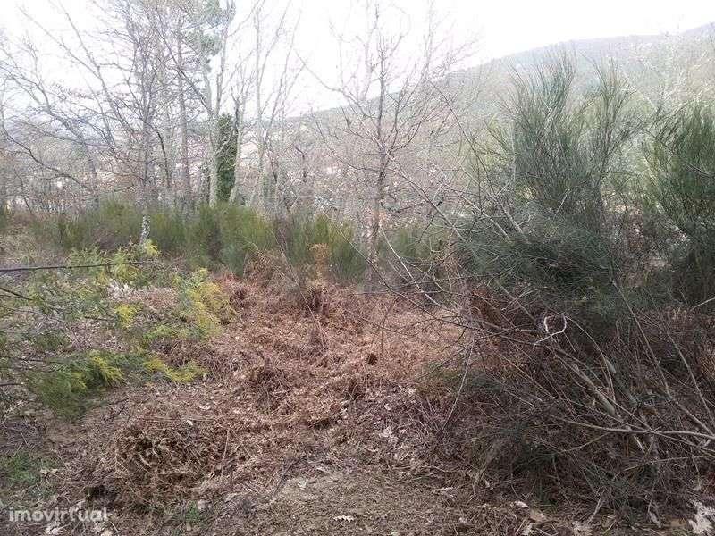 Quintas e herdades para comprar, Bornes de Aguiar, Vila Real - Foto 10