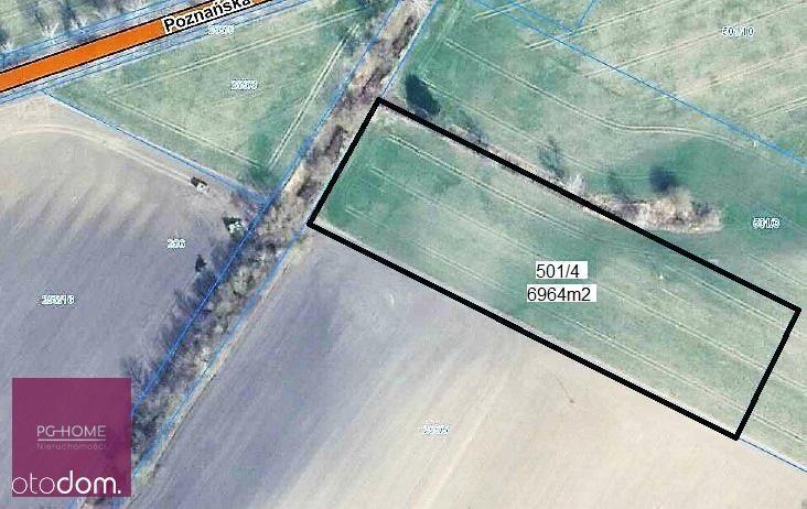 Działka 6964m², blisko S11, Grzebienisko