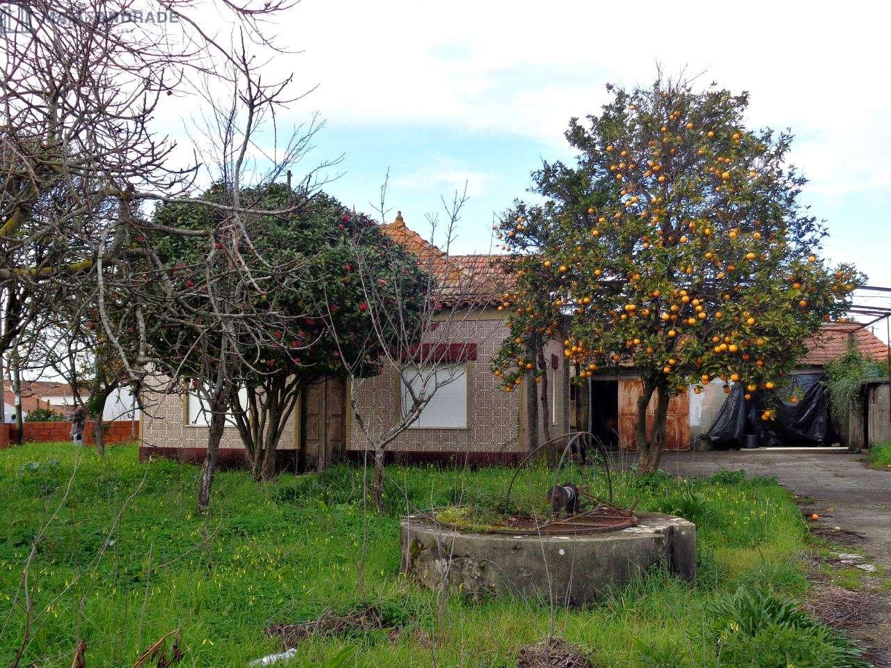 Moradia para comprar, Beduído e Veiros, Aveiro - Foto 1