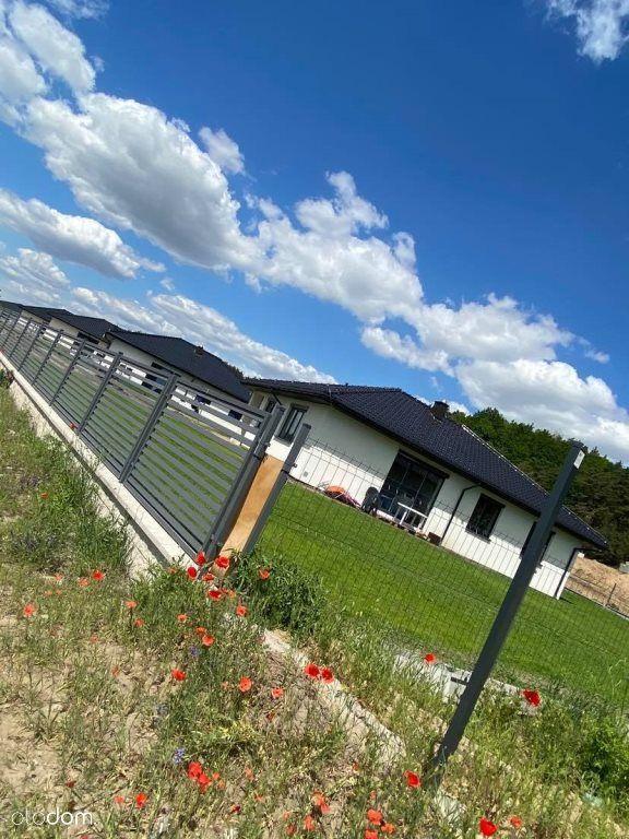Nowe domy w okolicy lasu i łąk
