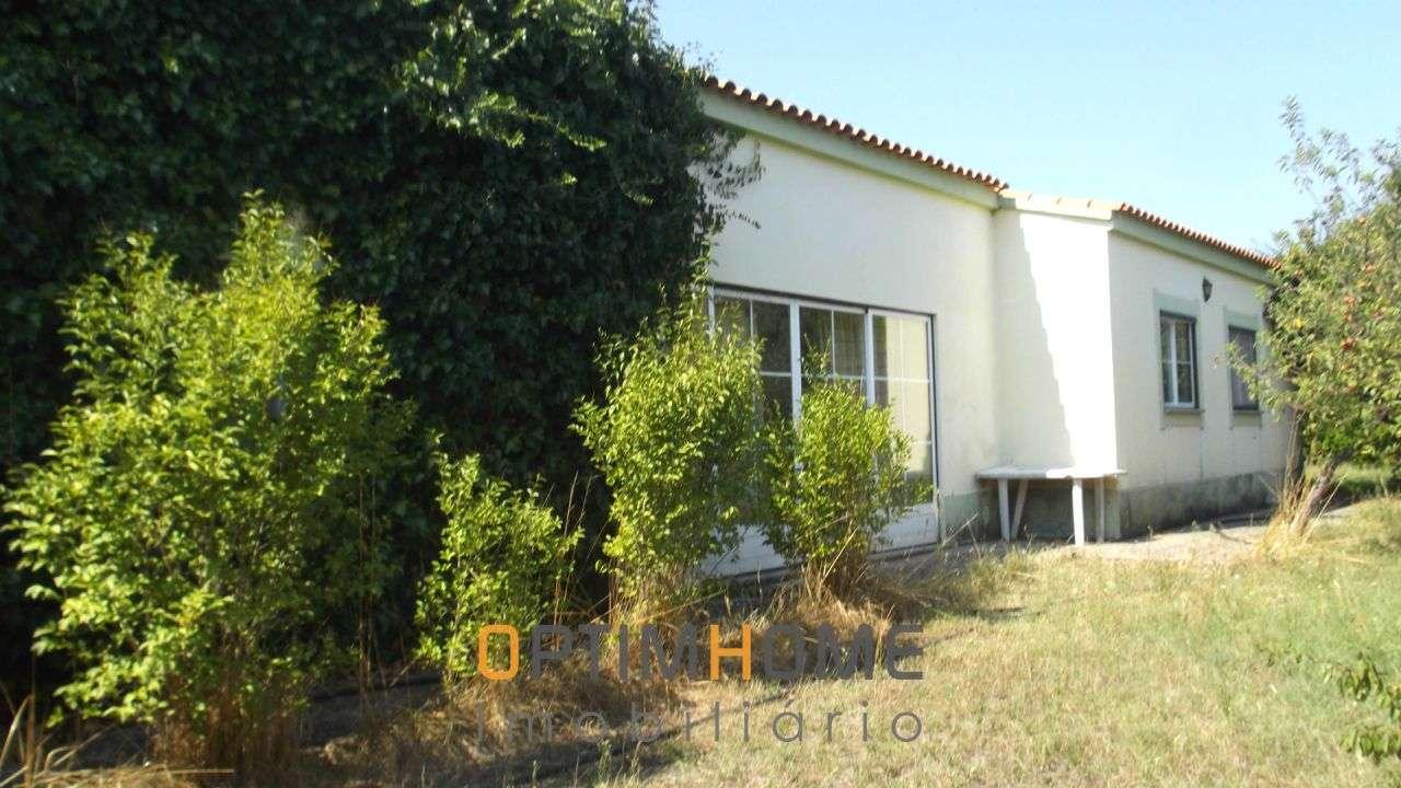 Quintas e herdades para comprar, Caria, Belmonte, Castelo Branco - Foto 24