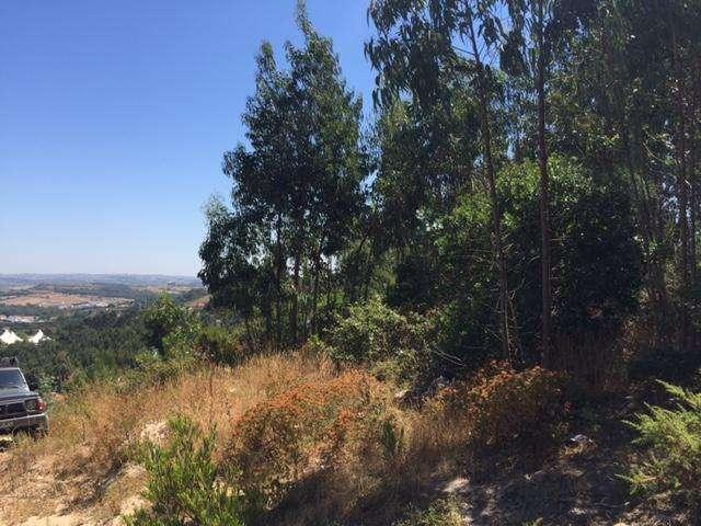 Terreno para comprar, Milharado, Mafra, Lisboa - Foto 2