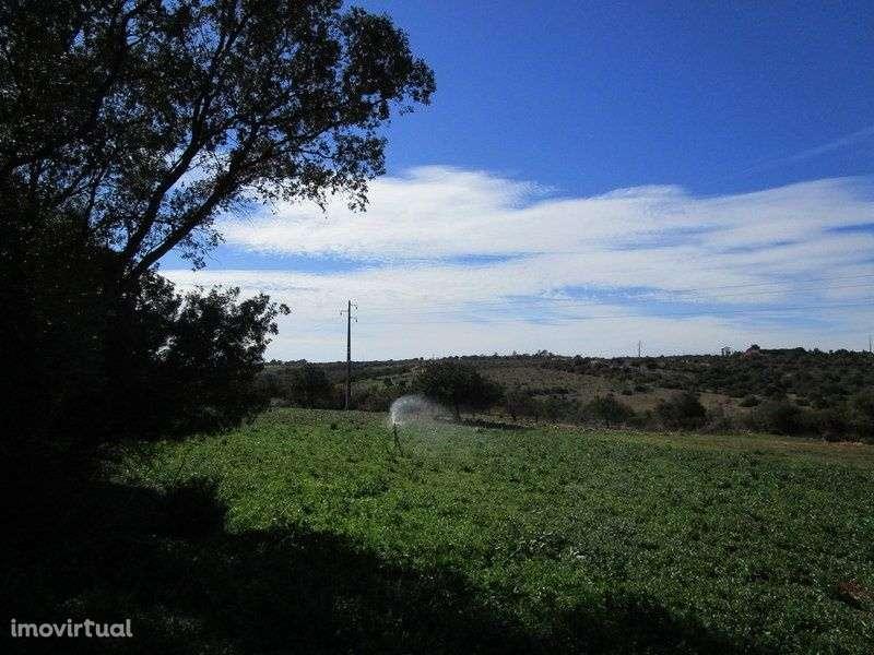 Quintas e herdades para comprar, Mexilhoeira Grande, Portimão, Faro - Foto 5