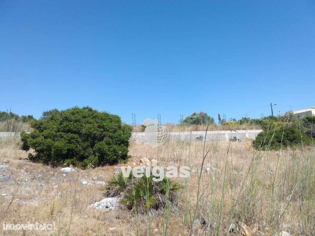 Terreno para comprar, Cascais e Estoril, Cascais, Lisboa - Foto 14