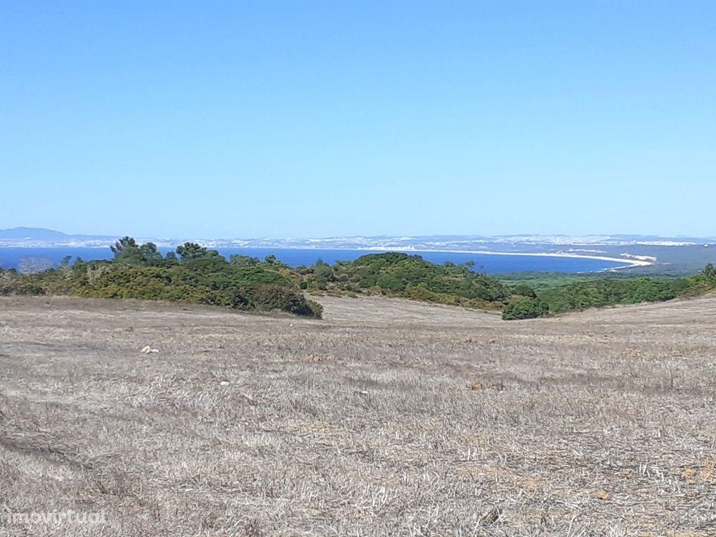 Terreno para moradia isolada com vista mar!