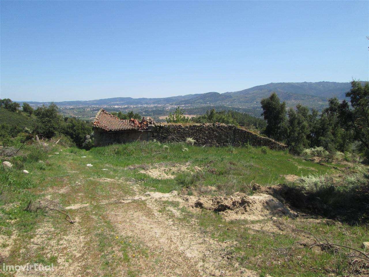 Quintas e herdades para comprar, Telhado, Castelo Branco - Foto 1