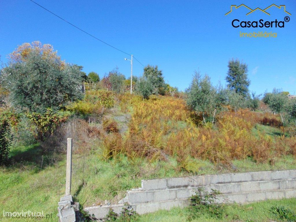 Terreno para comprar, Sertã, Castelo Branco - Foto 6