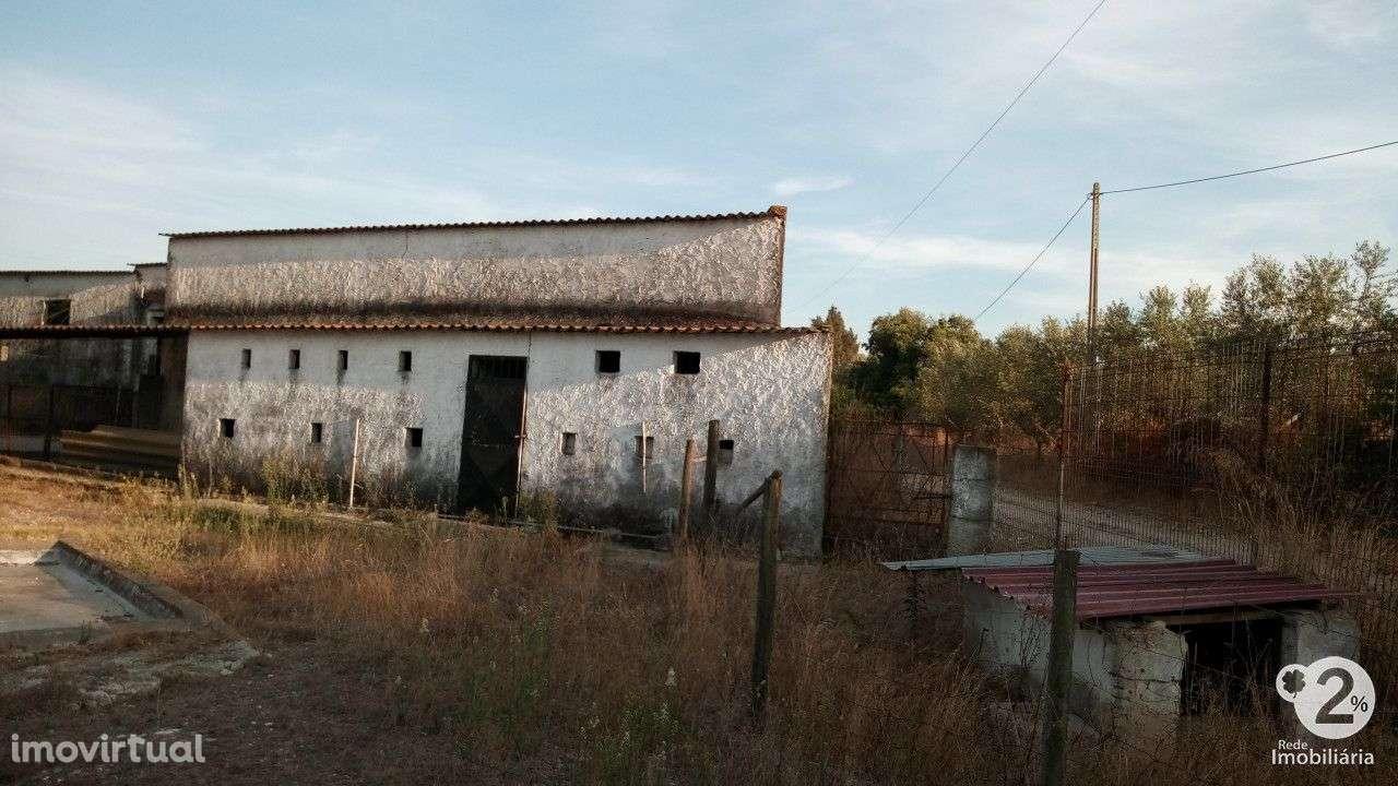 Quintas e herdades para comprar, Palmela, Setúbal - Foto 11