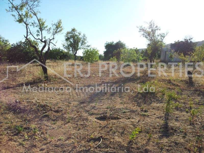 Terreno para comprar, Moncarapacho e Fuseta, Faro - Foto 4