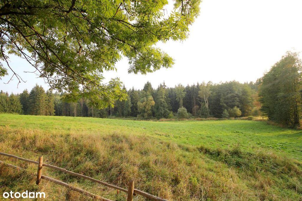 Wspaniały teren pod lasem na wymarzoną inwestycję