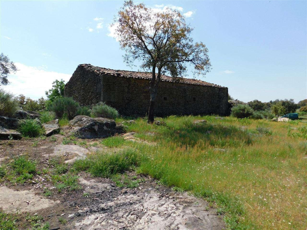 Terreno para comprar, Vale de Prazeres e Mata da Rainha, Castelo Branco - Foto 4