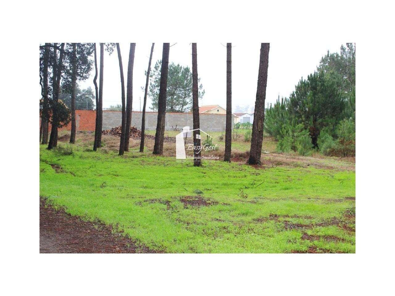 Terreno para comprar, Monte Redondo e Carreira, Leiria - Foto 17
