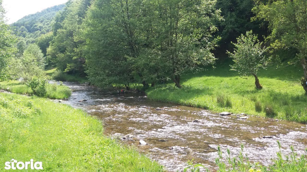 Teren Valea Draganului