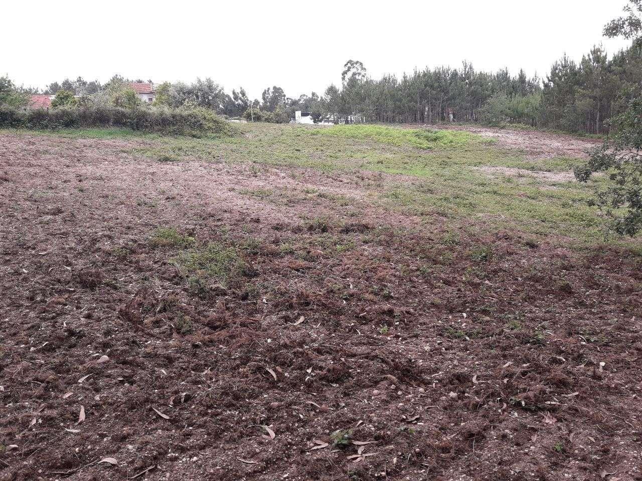 Terreno para comprar, Guia, Ilha e Mata Mourisca, Leiria - Foto 9