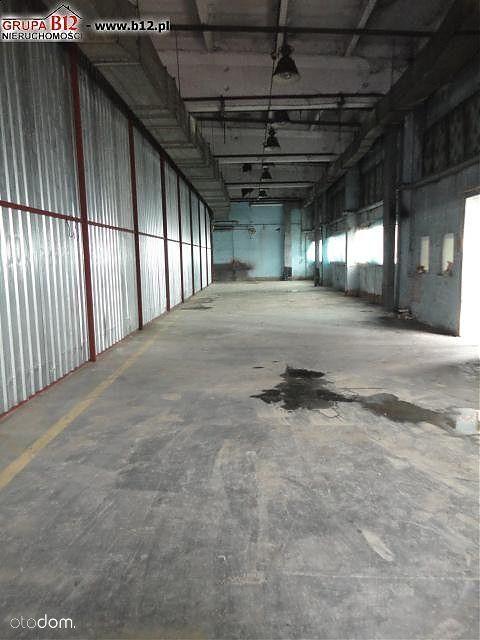 Lokal użytkowy, 1 000 m², Kraków