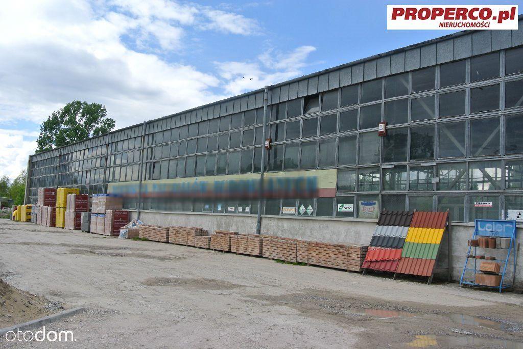 Hala 800 m2, Piekoszów