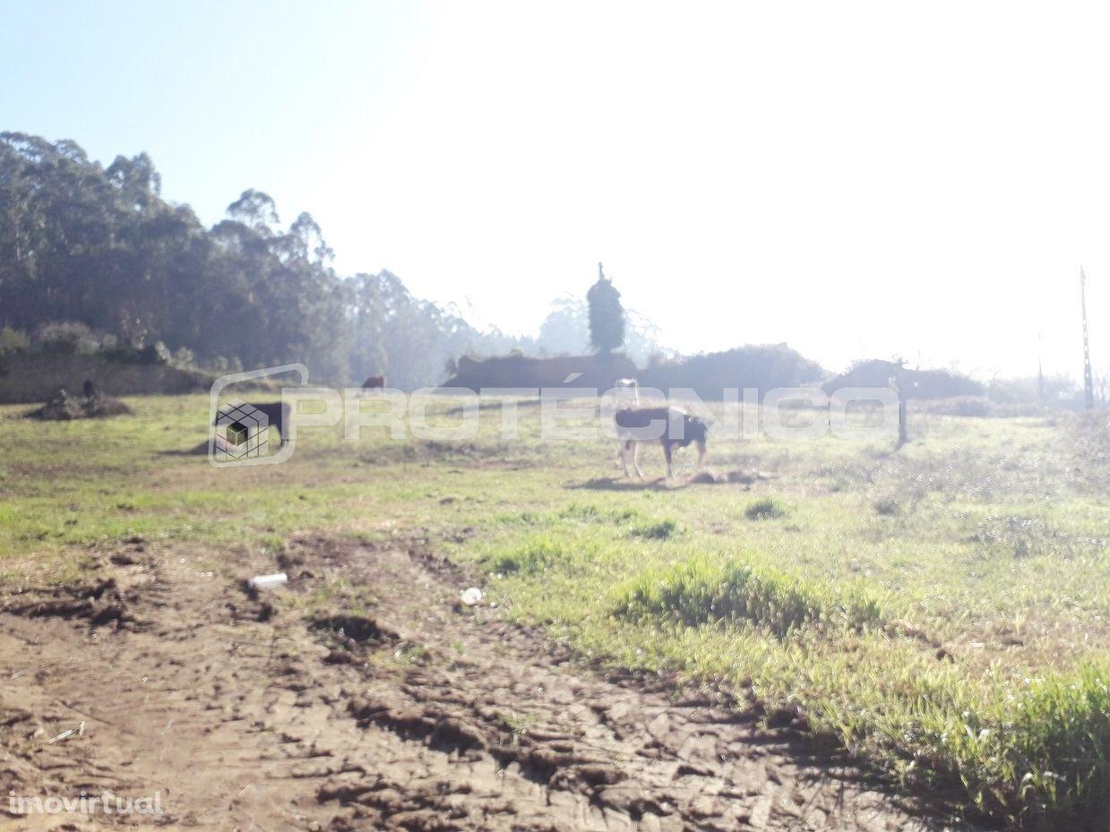 Terreno para comprar, Albergaria-a-Velha e Valmaior, Albergaria-a-Velha, Aveiro - Foto 8