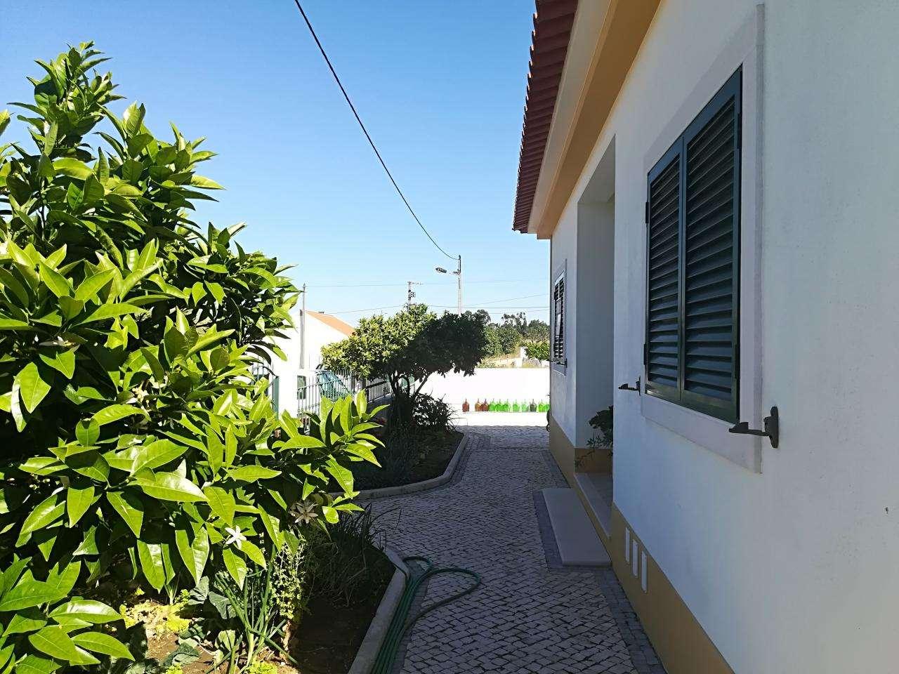 Moradia para comprar, Brogueira, Parceiros de Igreja e Alcorochel, Torres Novas, Santarém - Foto 35