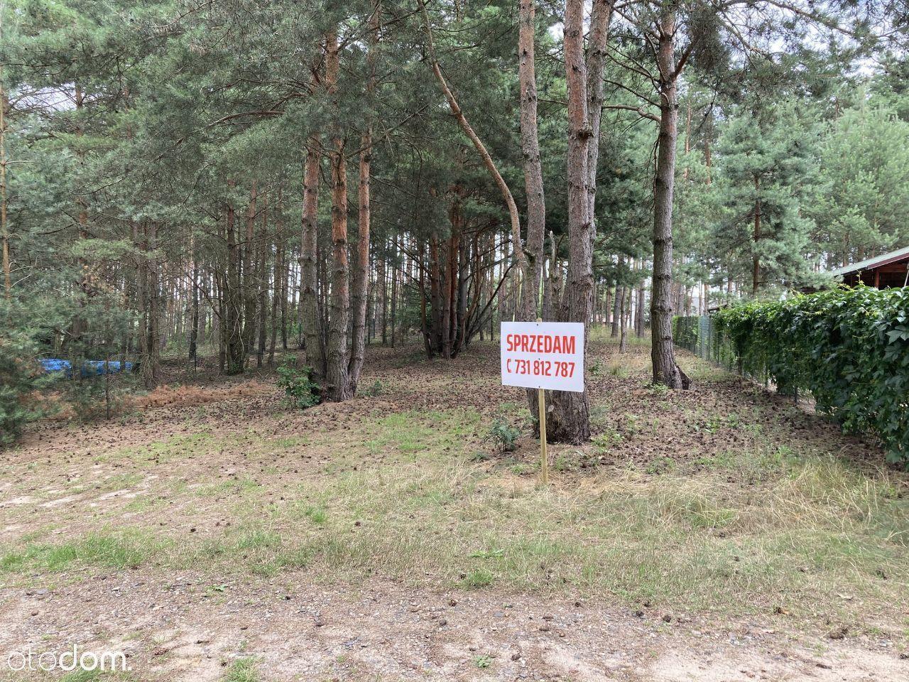 Działka Anastazewo 718m2