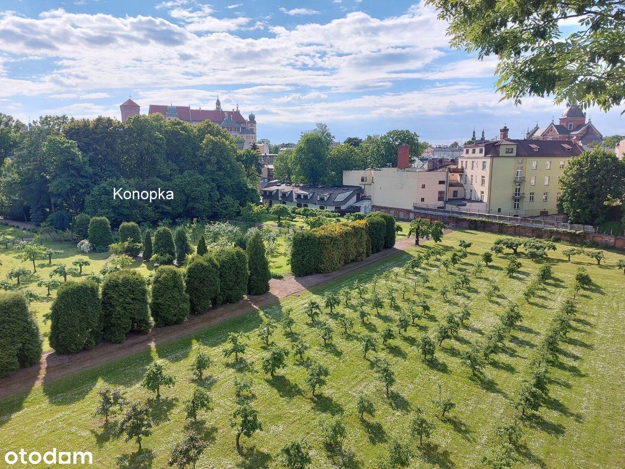 Wawel i ogrody w zasiegu wzroku z okna
