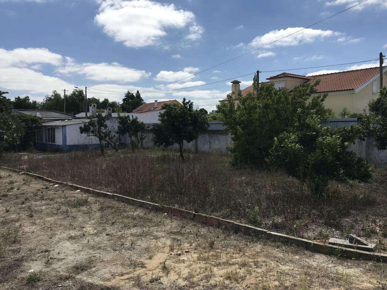 Terreno para comprar, Quinta do Anjo, Setúbal - Foto 8