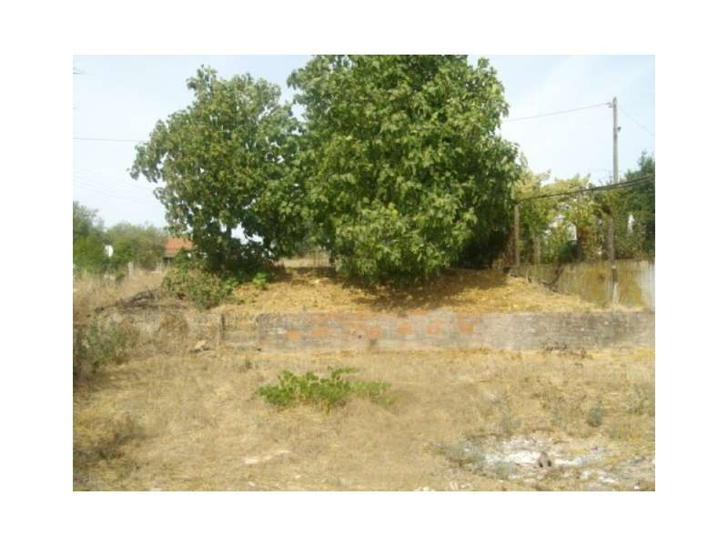 Terreno para comprar, Alvega e Concavada, Abrantes, Santarém - Foto 1